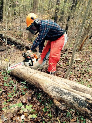 Chain saw work on Eagle Spur trail